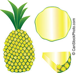 Pineapple vector - Textured vector illustration of a whole ...