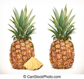 Pineapple. Whole and pieces. Sweet fruit. 3d vector icons set. Realistic illustration