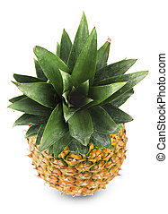 Pineapple with bright green leaves
