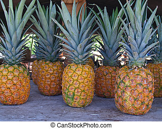 Pineapples at a Roadside Market in