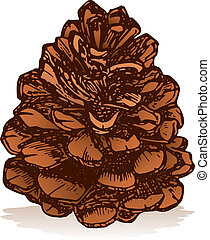 Pinecone vector - Pinecone icon isolated on white background...