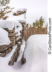 Pines and snow-covered rock