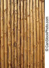 pine's, boisé, abattage