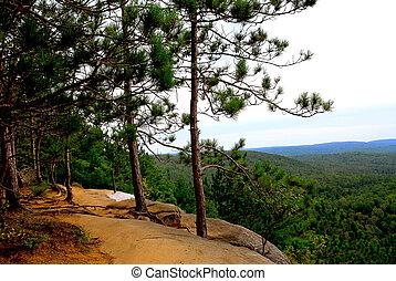 Pines cliffs trail - Forest trail on pine cliffs in...