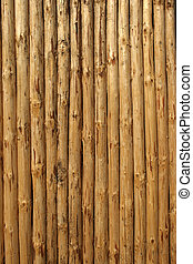 pine\\\'s timbered felling vertical background