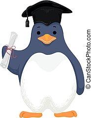 pingüim, boné graduado, diploma