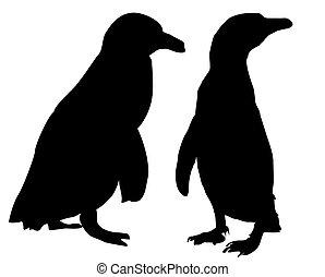 pingüino, vector, -silhouette, -