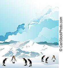 pingüinos, antártico