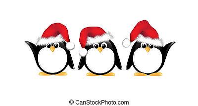 pingüinos, navidad, aislado