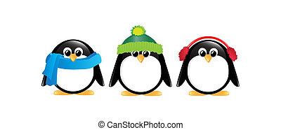 pingüins, isolado