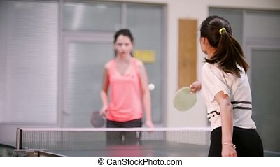 Ping pong playing. Young woman with ponytail playing table...