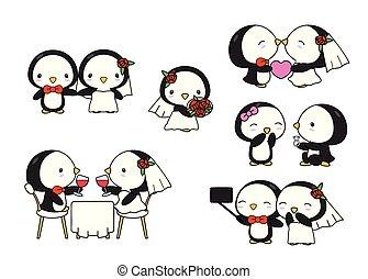 pinguino, carino, matrimonio