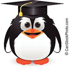 pinguino, con, berretto laurea