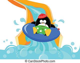 pingvin, på, vand glid
