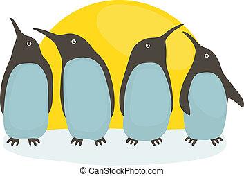 pingwiny, i, słońce