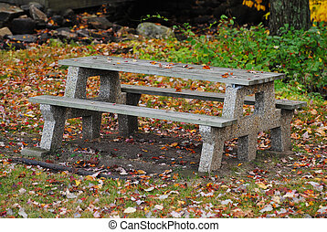 Pinic Table in the Woods in Autumn
