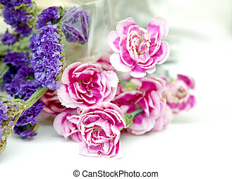 Pink and blue flowers on white