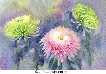 Pink and green chrysanthemum watercolor background
