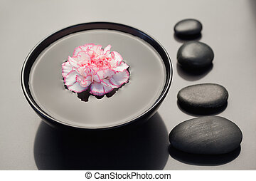 Pink and white carnation floating in a black bowl with aligned black stones on its side