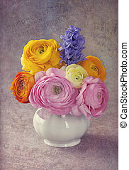 Pink and yellow ranunculus in a vase