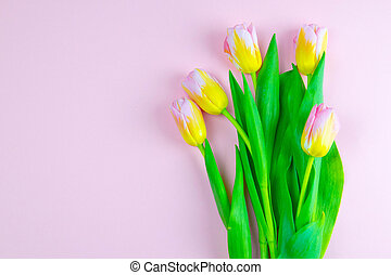 Pink and yellow tulips on pink background