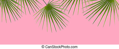 Pink Background with Green Palm Leaves