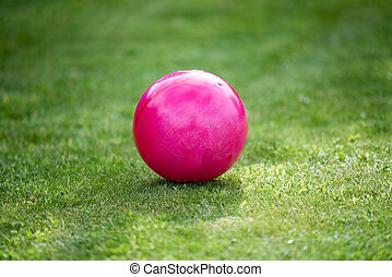 Pink ball on a grass