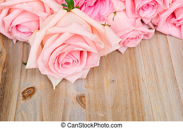 Pink blooming roses on wood