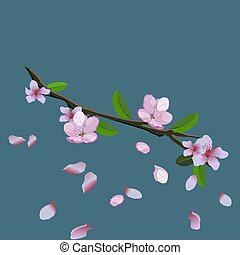 Pink blossom of sakura - Japanese cherry tree branch with flying petals isolated on blue background. Vector illustration