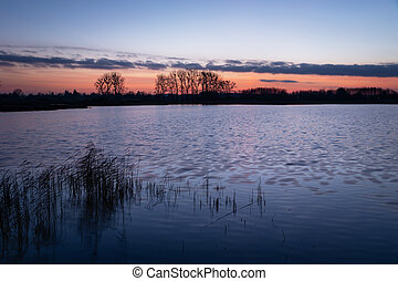 Pink blue sky after sunset on a lake with reeds