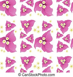 Pink bougainvillea flowers on seamless background illustration