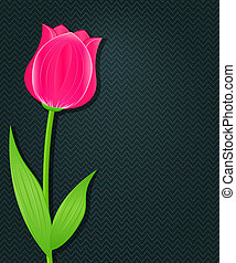 Pink Bright Tulip on Dark Black Background