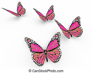 pink butterflies isolated on white background and soft ...