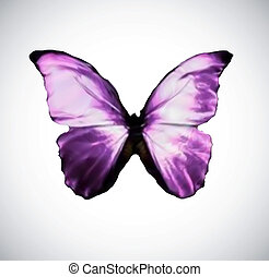 pink Butterfly isolated on white. Vector - Hand drawn...