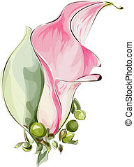 Pink Calla. Imitation watercolor. Vector illustration.
