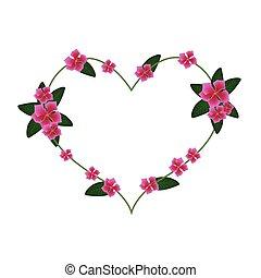 Pink Cape Periwinkle Flowers in A Heart Shape - Love...