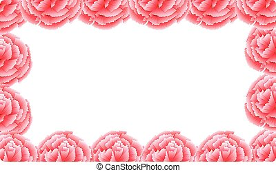 Pink carnation flower frame