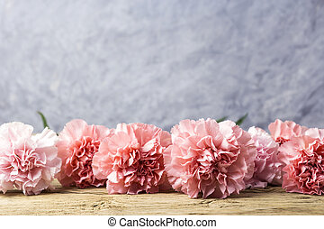 Pink carnation flowers on old wood with copy space