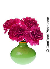 pink carnations in green vase