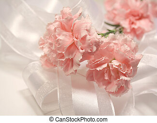 Pink Carnations - Soft pink carnations and white silky...