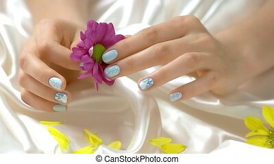 Pink chrysanthemum in manicured hands. Young woman hands...