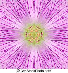 Pink Concentric Flower Center Mandala Kaleidoscope - Pink,...
