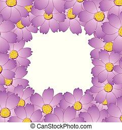 Pink Cosmos Flower Border2
