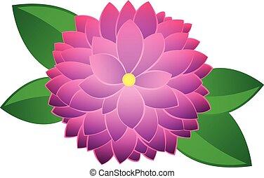 Dahlia Flower Vector Clip Art EPS Images 1569