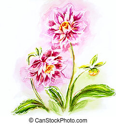 Pink dahlia, watercolor painting.