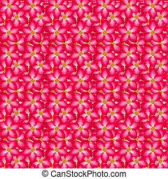 Pink desert background