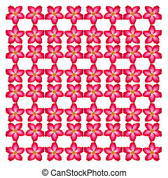 Pink desert seamless pattern background