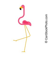 Pink flamingo isolated. Bird long legs and neck.