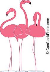 Pink flamingos on a white background