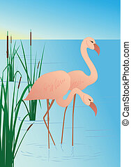 Pink flamingos on lake with canes